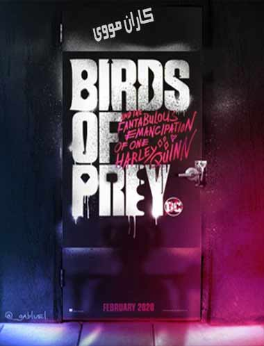 دانلود فیلم پرندگان شکاری 2020 با زیرنویس فارسی چسبیده