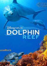 دانلود مستند Dolphin Reef 2018