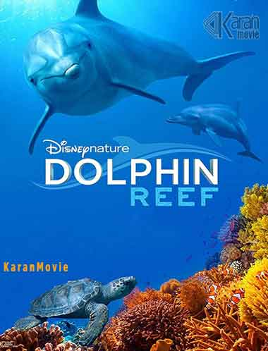 دانلود مستند Dolphin Reef 2020