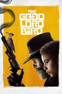 دانلود مینی سریال The Good Lord Bird 2020 با زیرنویس فارسی
