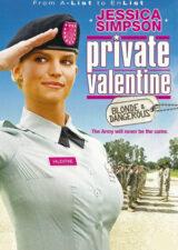دانلود فیلم سرباز ولنتاین: بلوند و خطرناک Private Valentine: Blonde & Dangerous 2008